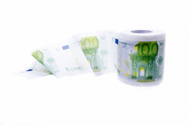 Novelty toilet paper euro printed